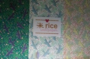 米 rice デンマーク .JPG